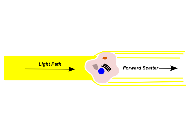 how to detect low fluorescence signal