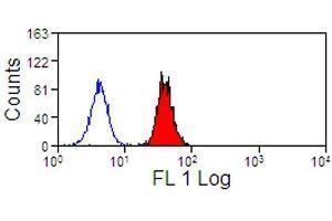 Image no. 1 for anti-Sialic Acid Binding Ig-Like Lectin 9 (SIGLEC9) antibody (PE) (ABIN2476488)