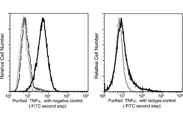 Flow cytometric analysis of Purified anti-Human TNFa on CHO transfected cells and stimulated lymphocytes. Left panel The transfected cells stained with Purified Mouse anti-TNFa (Bold line hisgram,1 μg/test), To demonstrate specificity of staining, the bin