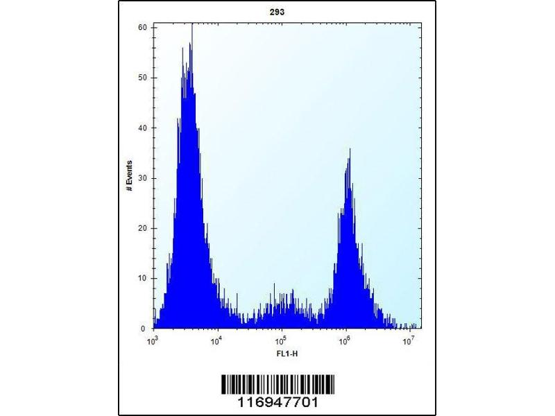 Image no. 1 for anti-Cytochrome P450, Family 20, Subfamily A, Polypeptide 1 (CYP20A1) (AA 221-250) antibody (ABIN5534019)