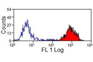 Image no. 1 for anti-MHC Class I (Monomorphic) antibody (PE) (ABIN2475597)