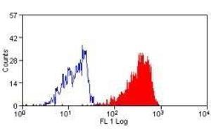 Image no. 1 for anti-Mucin 2, Oligomeric Mucus/gel-Forming (MUC2) antibody (FITC) (ABIN2475755)