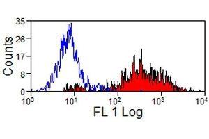Image no. 1 for anti-SLA Class II DR antibody (ABIN2476509)
